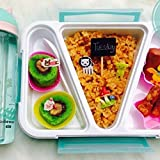 Jeval Rectangle Seperate Lunch Box for Kids/Teenagers- 800 ML (1 Pcs)