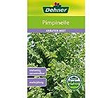 Dehner Kräuter-Saatgut, Pimpinelle, 5er Pack (5 x 3 g)