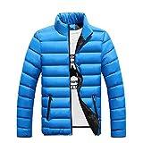 Giacca in cotone ispessito da uomo Giacca in cotone da taglio slim Giacca imbottita da collo in piedi Solid Coat per cappotto invernale - Royal Blue 3XL