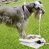 TAOtTAO Im Freienhundehaustier-trinkender Hündchen aktivierter Wasser-Brunnen-Schlauch-Wasser-Zufuhr