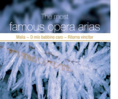 Most Famous Opera Arias Vol.2 [Import anglais]