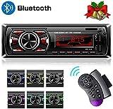 Hoidokly 1 Din Autoradio Bluetooth, 60W x 4 Stereo Audio Ricevitore, MP3 Player Lettore con Bluetooth/2 USB/EQ/SD/AUX/FM con Telecomando sul volante, 7 Colori LCD