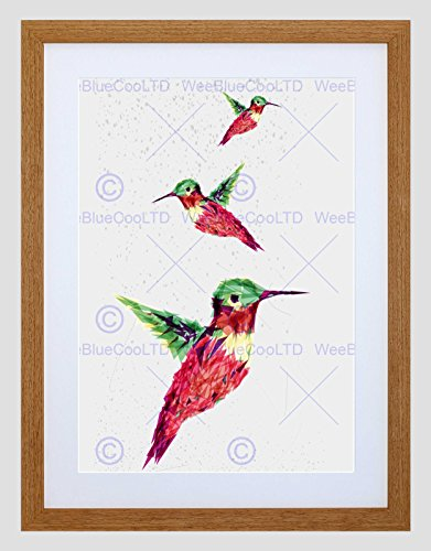 Hummingbird Mount (PAINTING ILLUSTRATION TRIO POLYGON HUMMINGBIRD FRAMED ART PRINT MOUNT B12X13627)