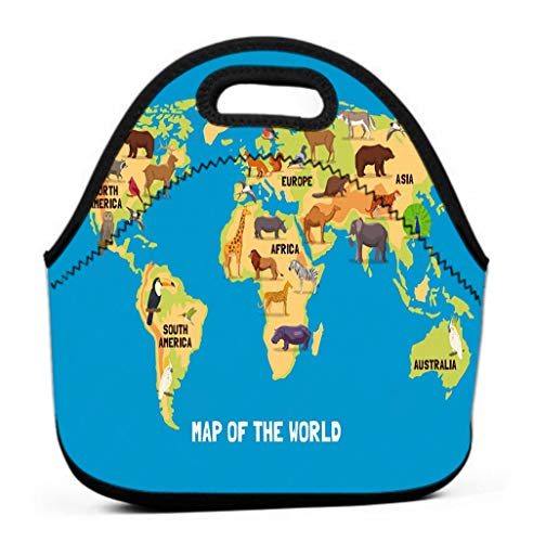 Lunch Bag for Women, Men and Kids - Reusable Lunch Tote for Work and School animals world map flat living different parts continents Fun