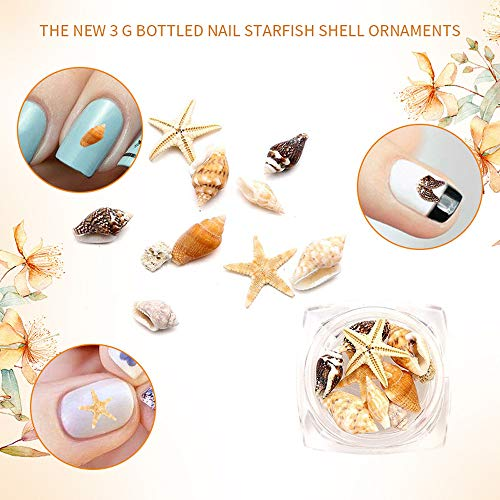 Sisit 1 Boîte de Décoration nail art,Coquille de Mer 1 BOX Nail Art Strass Briller Diamant Astuces Gems 3D Décoration DIY (Clair)