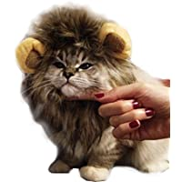 rameng-Kostüm Löwe für kleine Hunde Katzen Hut Mähne Kostüm Mane Haar Perücke