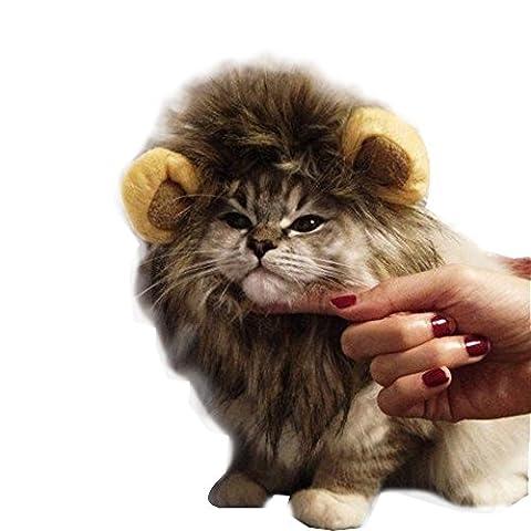 Rameng Costume de Lion Pour Petit Chien Chats Chapeau Crinière Déguisement Mane Cheveux Perruque