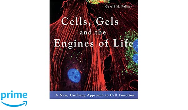 Cells, Gels & the Engines of Life: A New Unifying Approach ...