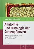 Anatomie und Histologie der Samenpflanzen: Mikroskopisches Praktikum für Pharmazeuten (Wissen und Praxis) - Elisabeth Stahl-Biskup