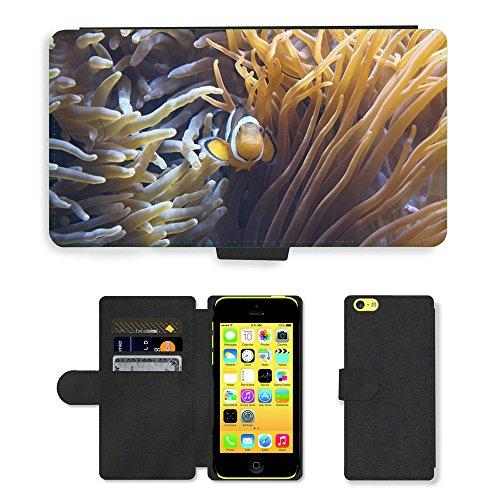 Just Mobile pour Hot Style Téléphone portable étui portefeuille en cuir PU avec fente pour carte//m00139014Anémones Tentacule Anémones de Mer//Apple iPhone 5C