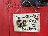Eyrrme Meerschweinchen-Schild Türschild Metall hängend Fenster Hausschild Welcome Vintage The Worlds Cutest Pets Lives here 17,78 x 25,4 cm Aluminium Schild