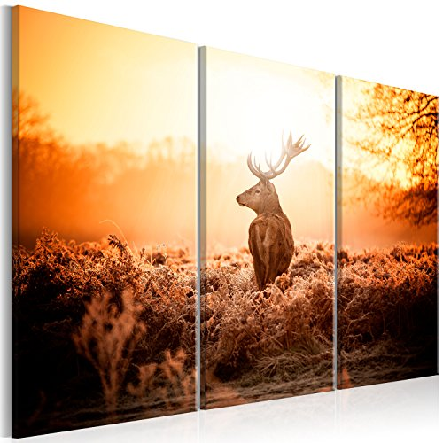 murando - Bilder Hirsch 120x80 cm Vlies Leinwandbild 3 Teilig Kunstdruck modern Wandbilder XXL Wanddekoration Design Wand Bild - Natur Landschaft Tier g-B-0045-b-f