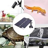 FairytaleMM Heißer IR 20W Einstellbare Temperatur Heizkissen Matte für Reptil Amphibien Haustier Nagelneu, schwarz, 42 * 28