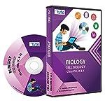 Letstute Complete Cell Biology For Class VIII, IX & X (DVD)