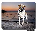 Gaming-Mauspads, Mauspad, Hundewasser Tier Natur Pet Sky Young Portrait