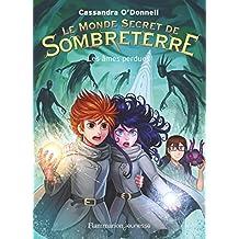 Le Monde Secret de Sombreterre, Tome 3 : Les âmes perdues