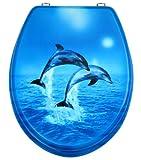 WC Sitz, hochwertige Oberfläche, einfache Montage, stabile Scharniere, Zwei Delphine