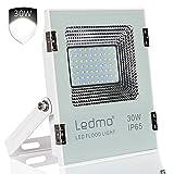 Projecteur LED 30W IP65 Imperméables à l' Projecteur LED Extérieur la lumière...