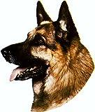 Aufkleber Schäferhund 160 x 140 mm ~~~~~ schneller Versand innerhalb 24 Stunden ~~~~~