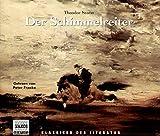 Der Schimmelreiter. 4 CDs.