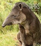 Tapirs (Living Wild)