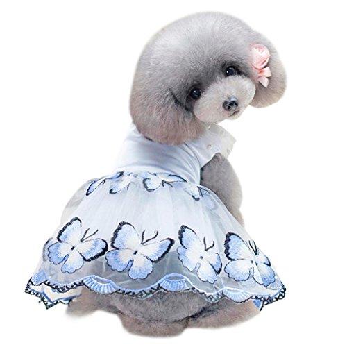 Schöne Hunde Schmetterling Kostüm - erthome Hundemantel, Kleiner Hundekleid Nette Hunde Haustier Schmetterling Kleid Sommer Rock Kleidung Kostüm (M, Blau)