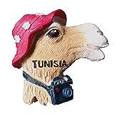 MUYU Magnet Tunisie Afrique 3D frigo Aimant Souvenir Souvenir Souvenir Cadeau & Collection Home &  Cuisine Decoration Sticker Tuning Aimant réfrigérateur Tunisia