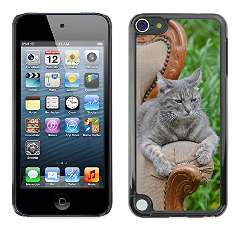 Carcasa Funda Prima Delgada SLIM Casa Case Bandera Cover Shell para // M00110387 Princesse Anaki Cat Pet Feline Nature // Apple ipod Touch 5 5G 5th