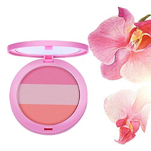 LHWY 2017 Beauty Face 3 Couleur Blush Maquillage Baked Cheek Blush Palette Colorete Sleek Cosmetic visage Ombre Press Poudre