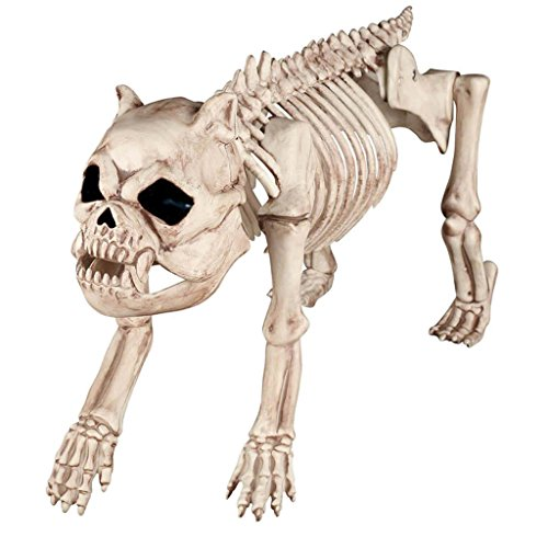 Halloween Horror Ornament Simulation Hund Code Skeleton Bone Regal Haunted House Bar Show Requisiten