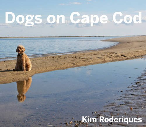 Dogs On Cape Cod -