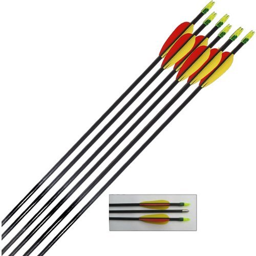 "Archery Fibreglass Arrows set of 6x28"" Test"