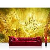 Vlies Fototapete 400x280 cm PREMIUM PLUS Wand Foto Tapete Wand Bild Vliestapete - DANDELION DREAMS - Blumen Natur Pusteblume Löwenzahn Ocker gelb beige - no. 073