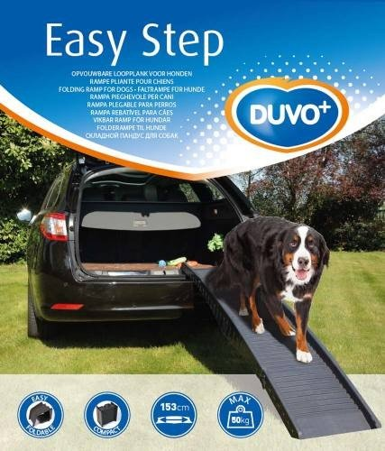 Duvo + Easy step auto rampa...