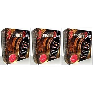 3-x-FAUSTINO-ADN-CABERNET-SAUVIGNON-Bag-in-Box-5L-Incl-Goodie-von-Flensburger-Handel