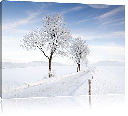 Albero nella neve, pittura su tela, Immagini XXL completamente incorniciate con grandi cornici di cuneo, foto muro Stampa artistica con cornice, più economico di pittura o di un dipinto a olio, non un manifesto o un cartello, Leinwand Format:120x80
