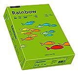 Papyrus 88042673 Drucker-/Kopierpapier farbig, Bastelpapier: Rainbow 80 g/m² DIN-A4, 500 Blatt Buntpapier, matt, intensivgrün -