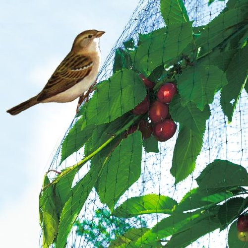 intermas-intermas-filet-de-protection-oiseaux-easynet