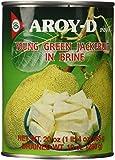 Aroy-D Grüne Jackfruit in Salzwasser 565g/ATG 280g
