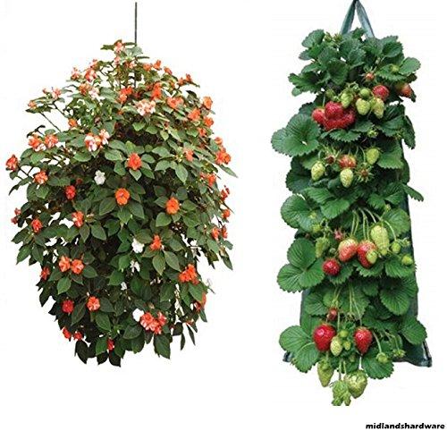 set-di-2-vaso-da-coltivazione-di-pomodori-erbe-aromatiche-fragole-di-fiori