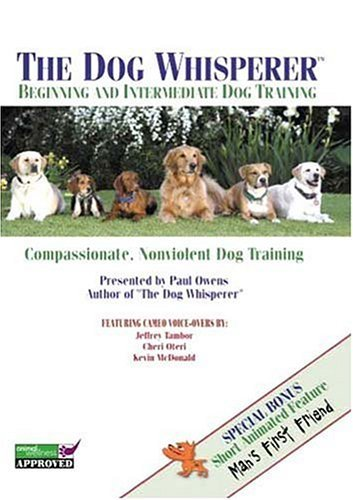 Beginning and Intermediate Dog Training by Paul Owens