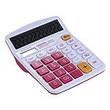 HONGYUANZHANG Mini Handheld Mini Rechner Büro Electronic Für Financeira Schule (14 * 11,5 * 5,0 Cm), Rose Red
