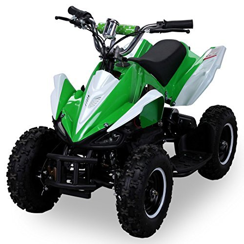 Mini Elektro Kinder Racer 800 Watt ATV Pocket Quad (grün)
