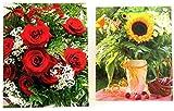 Geschenktüten Large (Groß) -K&B Vertrieb- Blumen Geschenktasche Geschenkbeutel Blumenbeutel Tragetasche Tüte Beutel Blumentasche Blumentüte 411 (24 Stück)