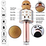 metors Wireless WS-858 Bluetooth Microphone Handheld Stand with Speaker for Cellphone (Multicolour)