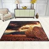 DEYYA Moderne Bereich Teppich Teppiche Natur Strohballen Non-Slip-Boden-Matte Fußmatten für Wohnzimmer Schlafzimmer es 63 x 48 Zoll Multi