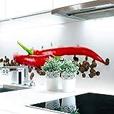 Küchenrückwand Pfeffer Chilli Premium Hart-PVC 0,4 mm selbstklebend 220x51cm