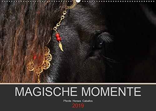 Magische Momente - Pferde Horses Caballos (Wandkalender 2019 DIN A2 quer)
