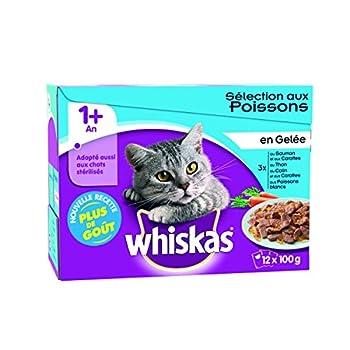 WHISKAS - Sélection aux Poissons en Gelée 1+ - Sachets Fraîcheur pour chats 12 x 100g - Lot de 4