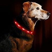 [Gesponsert]LED Leuchthalsband Hunde Halsband - Anicoll USB wiederaufladbar - Längenverstellbarer Haustier Sicherheit Kragen für Hunde und Katzen- 3 Modus 12 Lichte (rot)